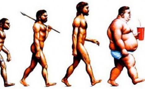 Лечение ожирения налогами