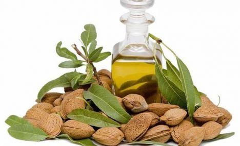 Миндаль – его свойства и польза миндального масла