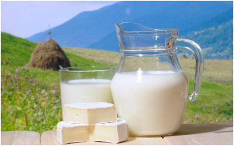 Молоко польза или вред