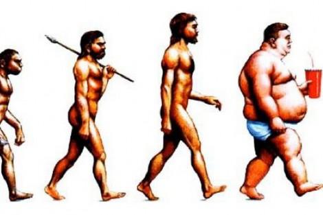 фаст-фуд и ожирение