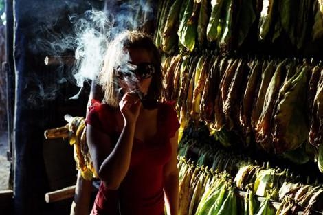 ГМО в сигаретах