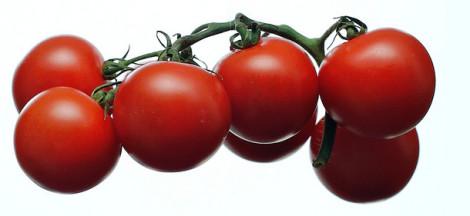 помидоры защищают от рака благодаря ликопину