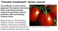 статья о влиянии ликопина на рост раковых опухолей